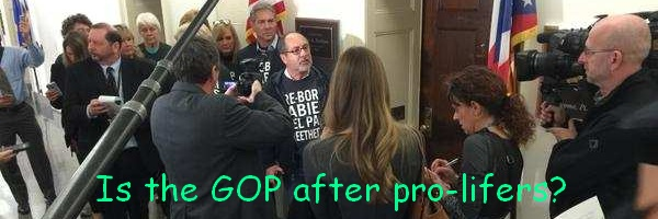 Jill Stanek Arrested, Republicans Attacked
